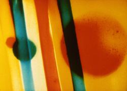 Lye Colour Flight